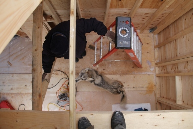 Looking in from above at the Tiny House helpers.